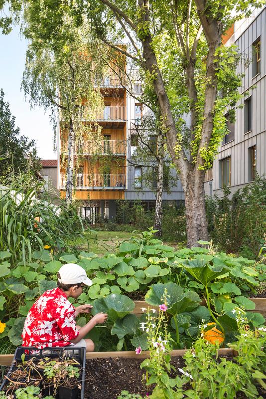 Le jardin Lebour 06